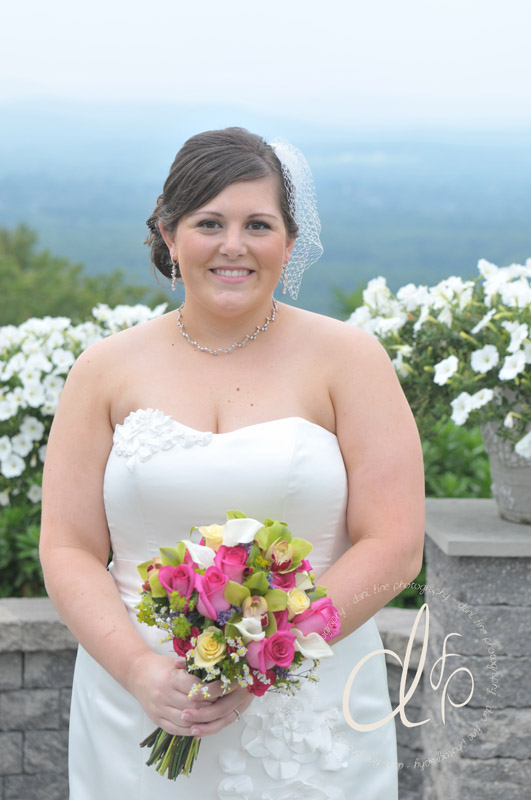 Classic bride on Mt. Tom at the Log Cabin